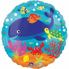 balon ryby